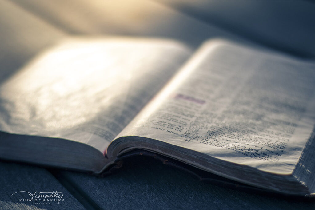 Bible on the table in the morning light