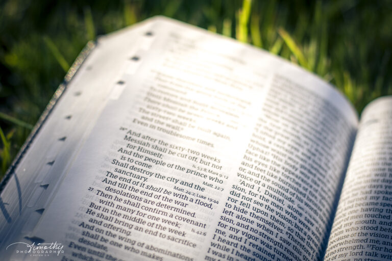 Bible in the backyard