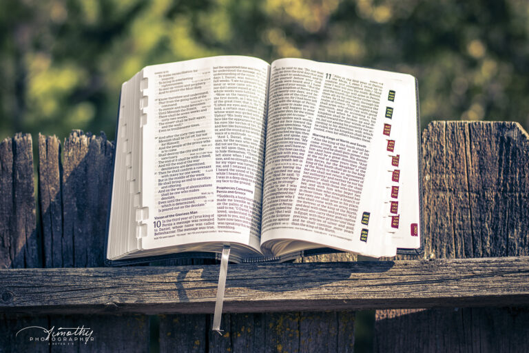 Bible on the fence