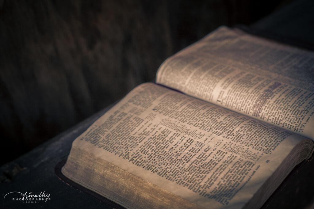 Rustic Bible