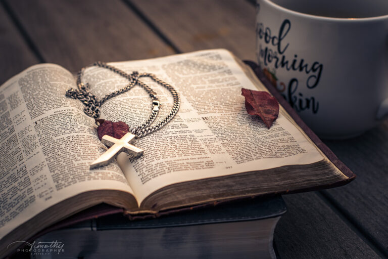 picture of a bible outside with a cross and fall leaves