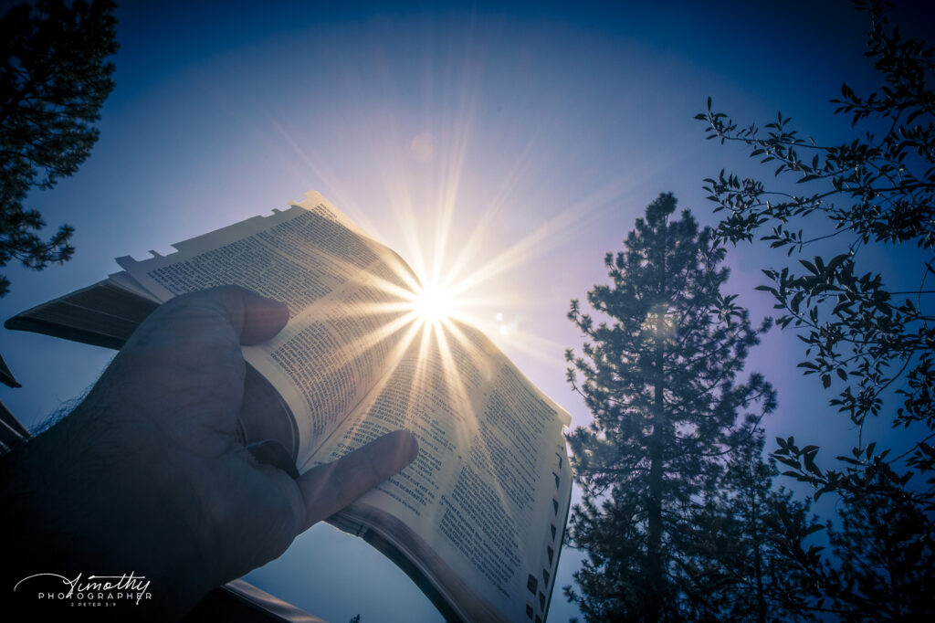 Some afternoon sun glares and the bible