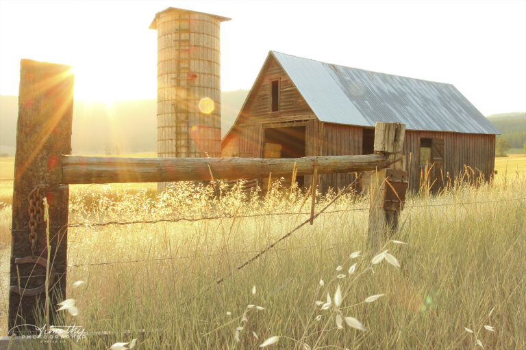Country Living barn in the evening sun