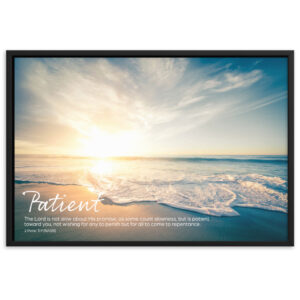 God is Patient – Framed matte paper poster