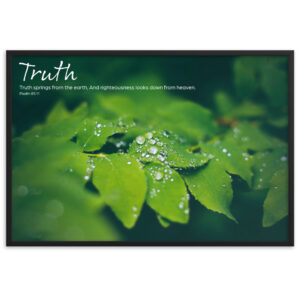 Truth – Framed matte paper poster