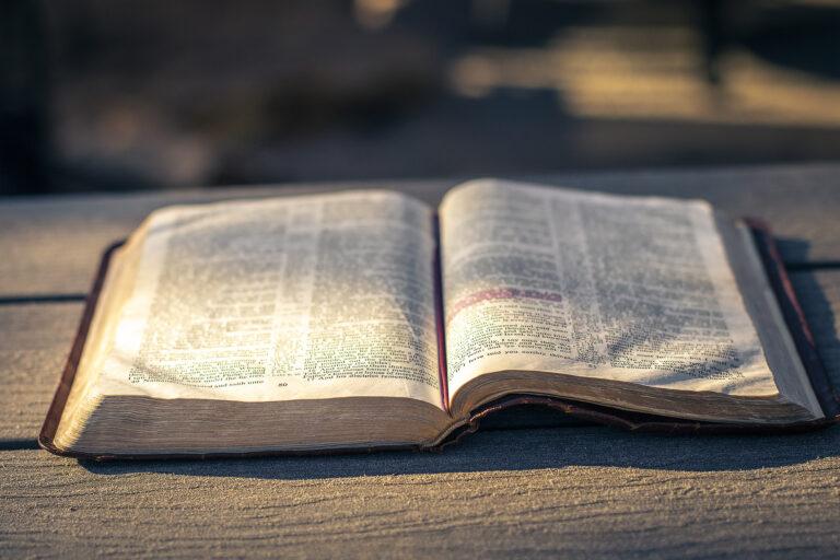 Bible open in the sun