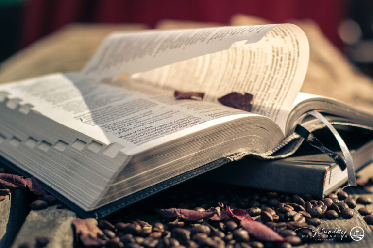bible outside on coffee beans