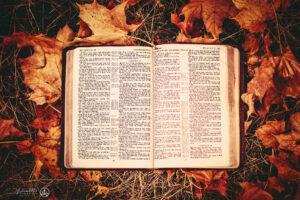 Do Christians sin?