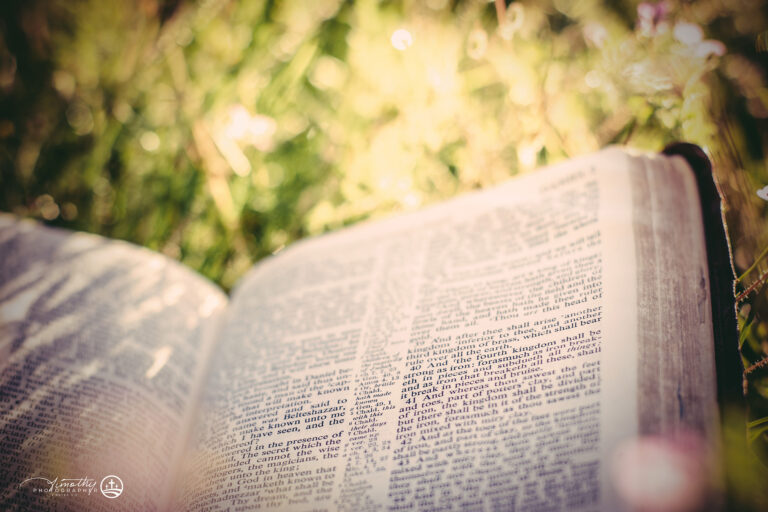 bible in wild flowers