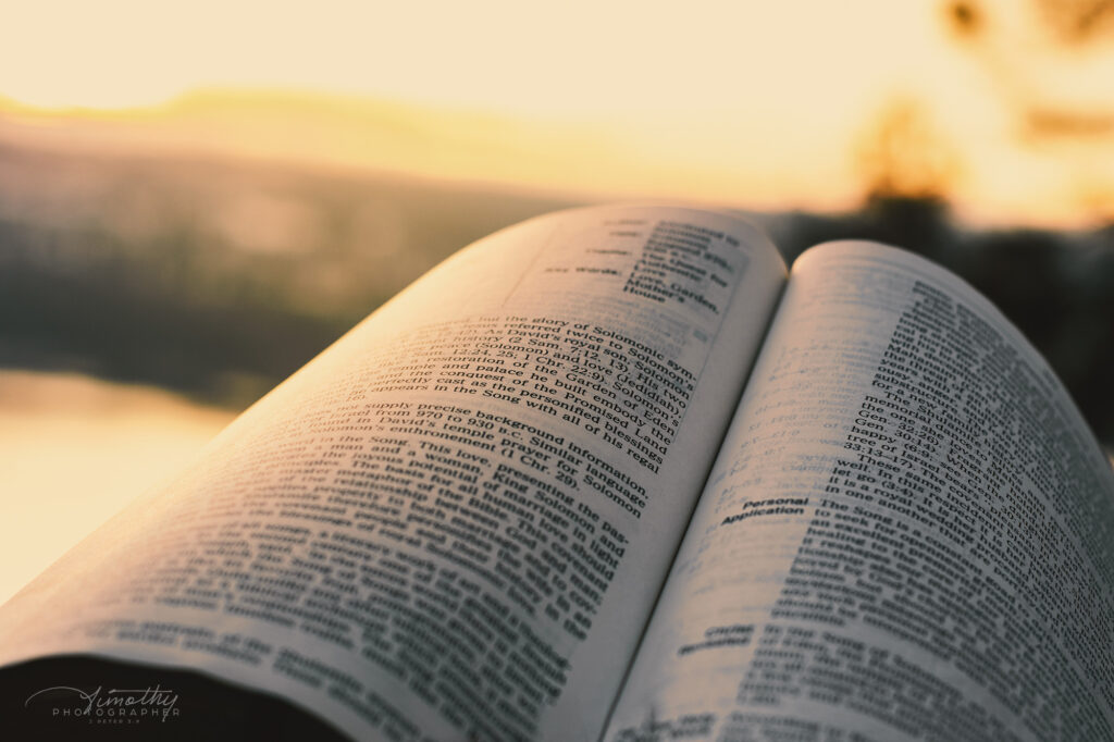 open bible in the evening sun
