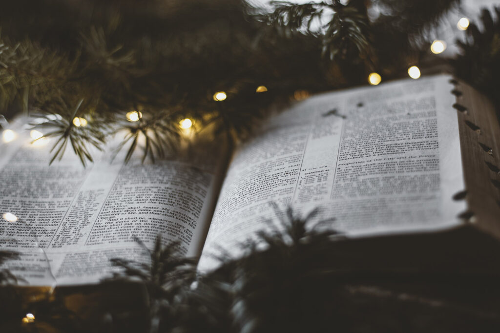 Christmas inspired bible pictures