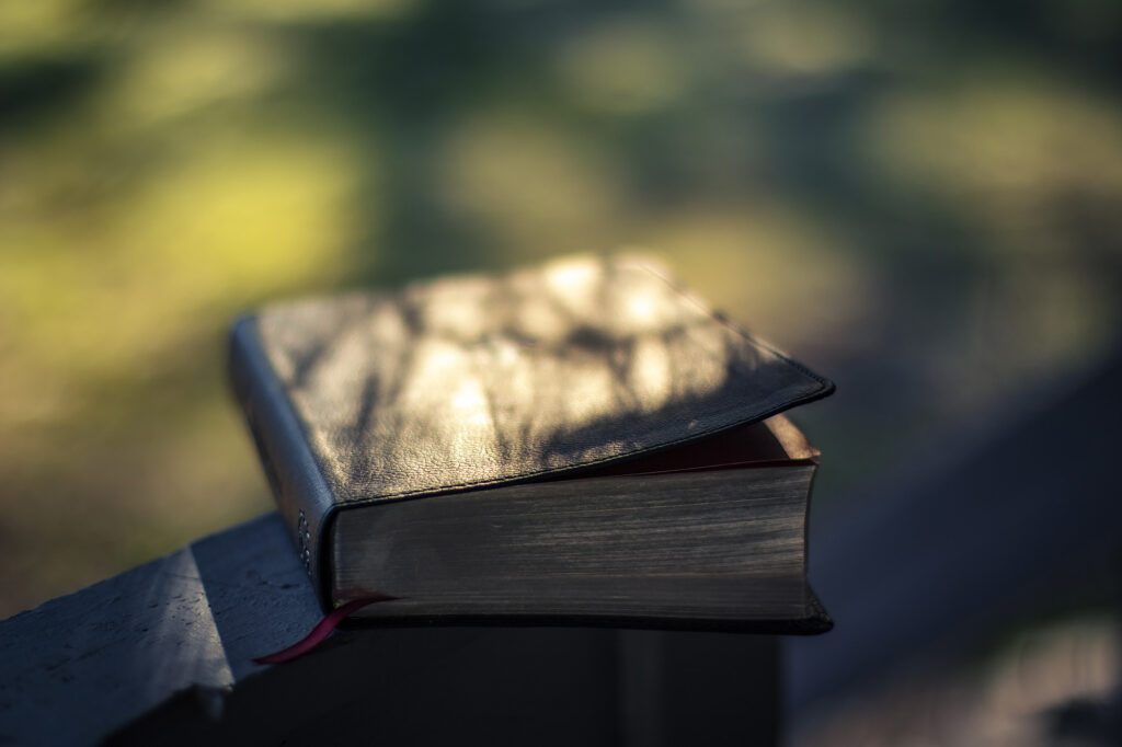 bible outside in the spring morning air