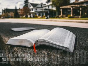 Seek His Will